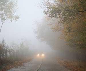 車-フォグランプ-黄色-後付け-車検-必要性-霧-画像
